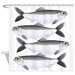 Alewife herring v2 Shower Curtain