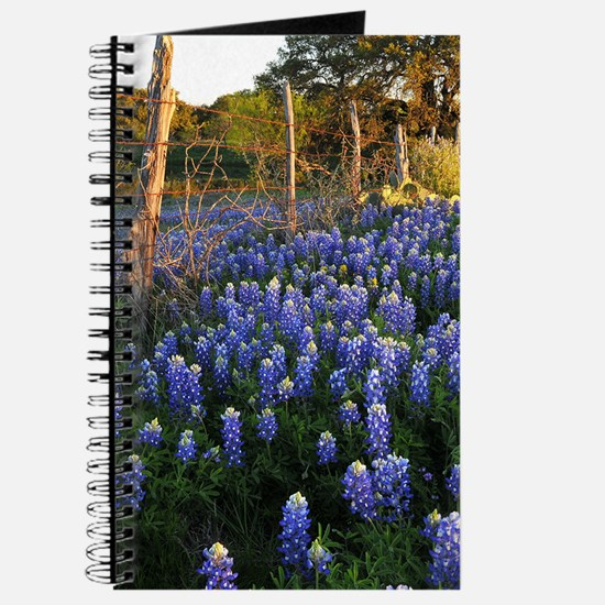 Bluebonnets and Fenceline Journal