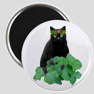 Black Cat Flowers Magnet
