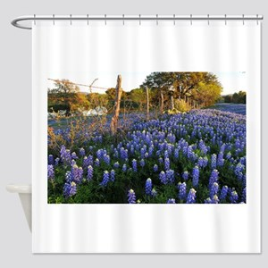 Bluebonnets And Fenceline Shower Curtain