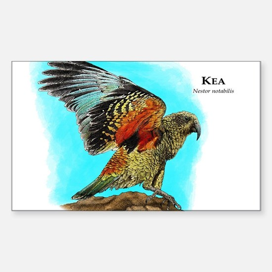 Kea Sticker (Rectangle)