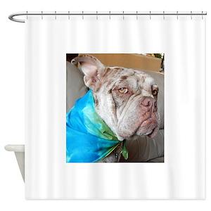 Old English Bulldog Shower Curtains