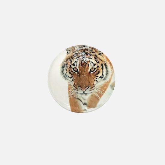 Snow Tiger Mini Button