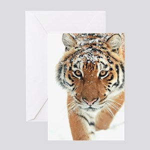 Snow Tiger Greeting Cards