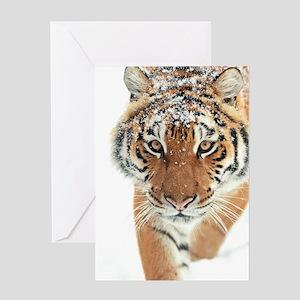 Snow Tiger Greeting Cards
