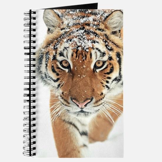 Snow Tiger Journal