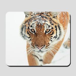 Snow Tiger Mousepad