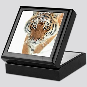 Snow Tiger Keepsake Box