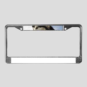Big dog License Plate Frame