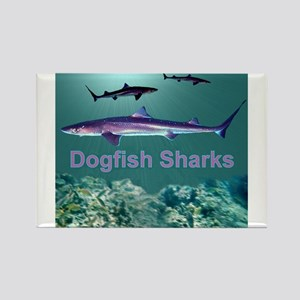 Dogfish Sharks - Rectangle Magnet