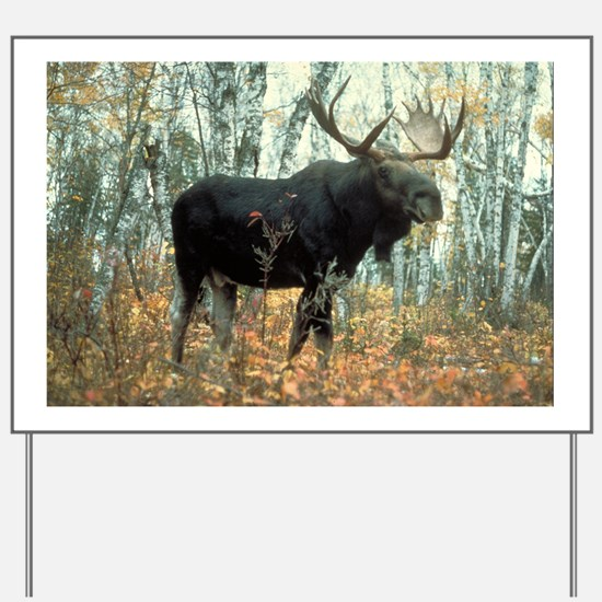 Huge Moose Yard Sign