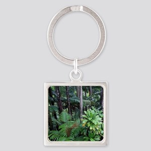Tropical Forest 12 Keychains