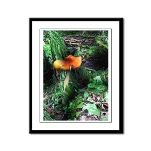 Magic Mushroom Framed Panel Print