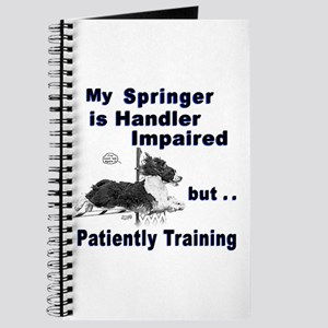 Springer Spaniel Agility Journal