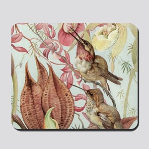 Vintage Hummingbirds and Orchids Mousepad