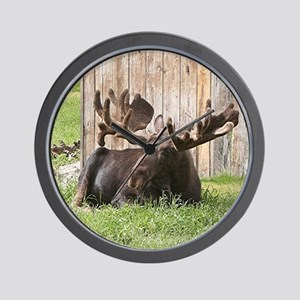 Sitting moose, Alaska, USA Wall Clock