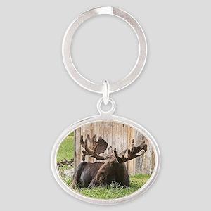 Sitting moose, Alaska, USA Oval Keychain