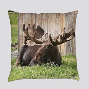 Sitting moose, Alaska, USA Everyday Pillow