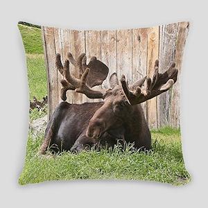 Sitting moose, Alaska, USA Everyday Pillow