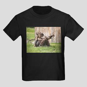 Sitting moose, Alaska, USA T-Shirt