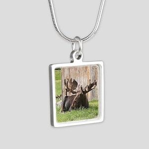 Sitting moose, Alaska, USA Necklaces