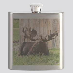 Sitting moose, Alaska, USA Flask
