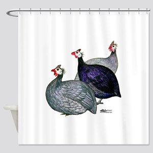 Guineas Three Shower Curtain