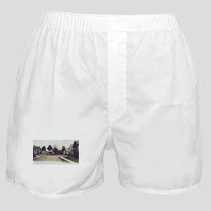 Rosa Park Boxer Shorts