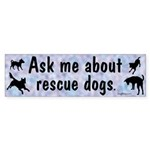 Ask Me About Rescue Dogs Bumper Sticker