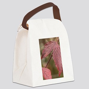Red Leaves Canvas Lunch Bag