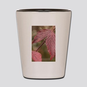 Red Leaves Shot Glass