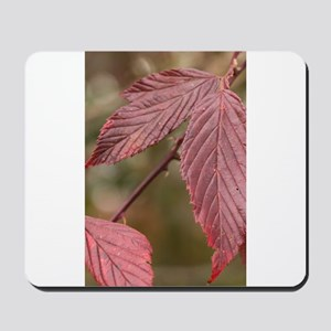 Red Leaves Mousepad