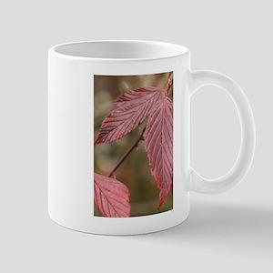 Red Leaves Mugs