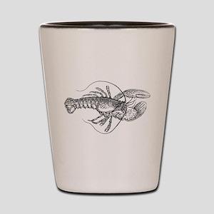Vintage Lobster illustration Shot Glass
