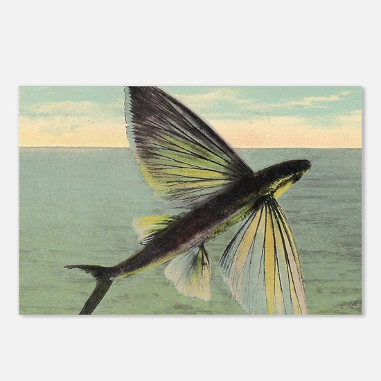 Flying Fish Postcards (Package of 8)