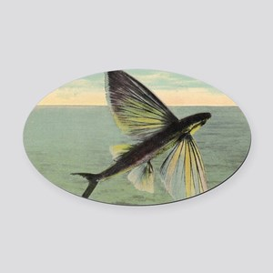 Flying Fish Oval Car Magnet