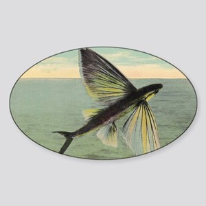Flying Fish Sticker (Oval)