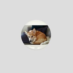Imitating a sleeping fox Mini Button