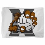 Apex Volleyball Pillow Sham