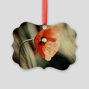 Poppy  Picture Ornament