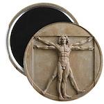Vitruvian Man relief Magnet