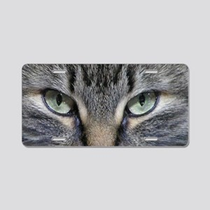 Main Coon Kitty Cat Aluminum License Plate