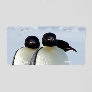 Emperor Penguins Huddled Aluminum License Plate