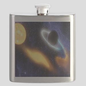 Black Hole Flask