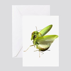 Mantis Greeting Card