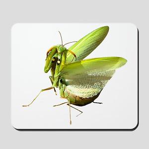 Mantis Mousepad