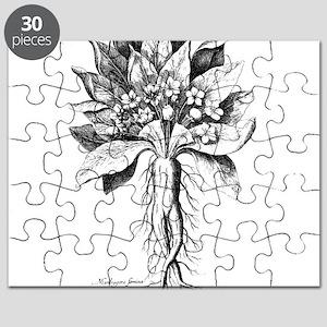 Mandragora autumn mandrake Psychedelic toxi Puzzle