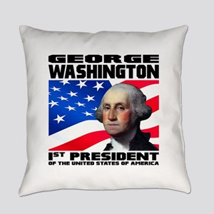 01 Washington Everyday Pillow