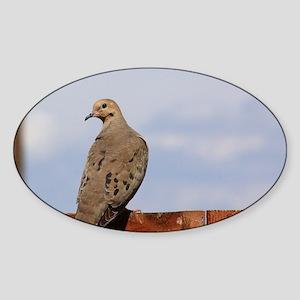 Morning Dove Sticker (Oval)
