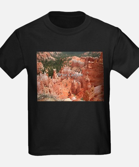 Bryce Canyon, Utah, USA 16 (caption) T-Shirt
